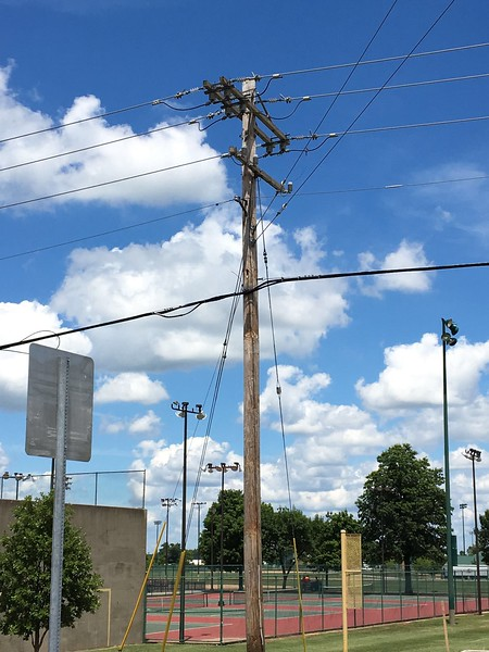 Western Kingbird nest <br /> (road side on top double cross beams)<br /> Bridgeton Municipal Athletic Complex (BMAC) <br /> Bridgeton, Missouri