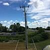 Western Kingbird nest pole <br /> Over levee north side at end of St. Charles Rock Road <br /> Bridgeton, MO