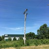 Western Kingbird nest pole <br /> Pole on north side of Electrical Sub-station <br /> 0.3 mile south of McDonnell on Fee Fee Road<br />  Hazelwood, MO