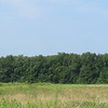 Looking west from fish ponds parking lot <br /> Duck Creek Conservation Area