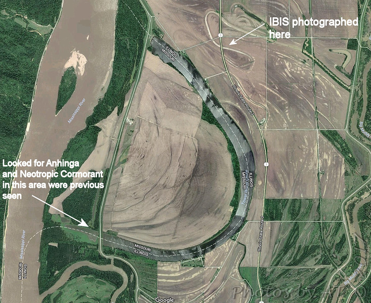 Map view of oxbow <br /> Old Mississippi River channel <br /> Grand Tower <br /> Jackson County, Illinois