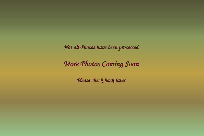 C:\Users\Allen\_Photos\7D2-3  2995_3276  04.13.17_05.18.17 NP <br /> Y:\_Photos\7D1-5\7D1-5  5265_5431  05.03.17_05.31.17 NP