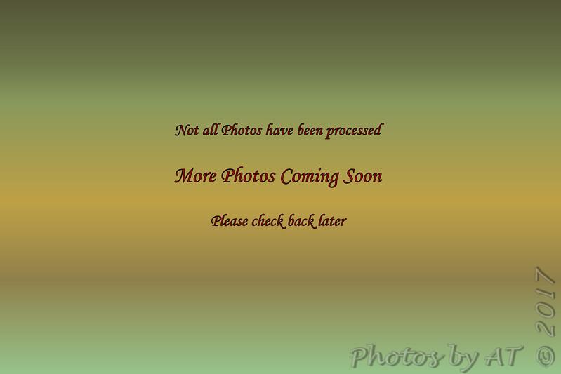 Y:\_Photos\7D1-5\7D1-5  5265_5431  05.03.17_05.31.17 NP