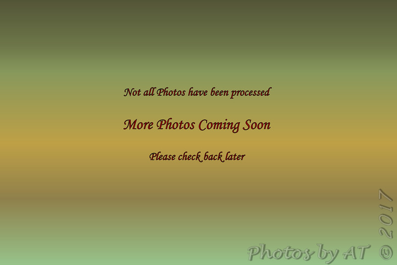 C:\Users\Allen\_Photos\7D1-5  7392_7412  11.18.17_11.28.17 NP