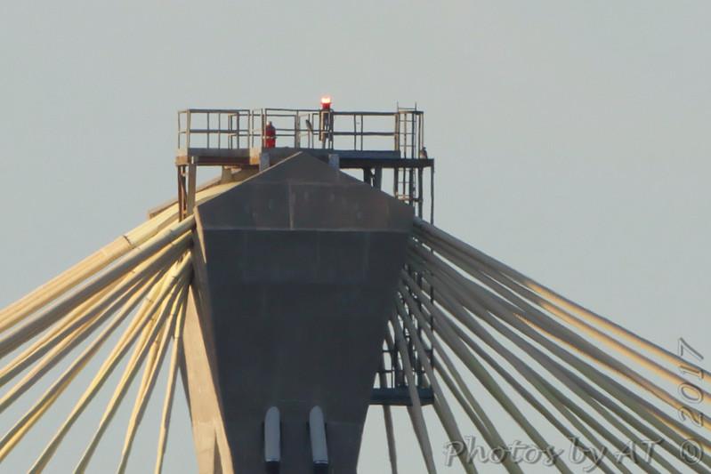 Peregrine Falcons <br /> Clark Bridge <br /> Mississippi River