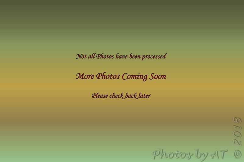 C:\Users\Allen\_Photos\7D3-0  4714_4836  01.27.18_02.09.18 NP