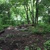 Gaddy Bird Garden <br /> Tower Grove Park