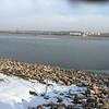 Teal Pond <br /> Long-tailed Duck was splash just left of center <br /> Riverlands Migratory Bird Sanctuary