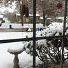 Record snow for this date  <br /> 4-5 inches so far <br /> Backyard feeders (hummer feeders temporary taken in) <br /> Bridgeton, Mo<br /> 2018-11-15 09:21:53
