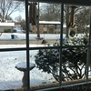 "Front yard feeders  <span class=""spacer_LB_caption""> • </span> <br> Bridgeton,Mo  <span class=""spacer_LB_caption""> • </span> <br> 2019-01-21"