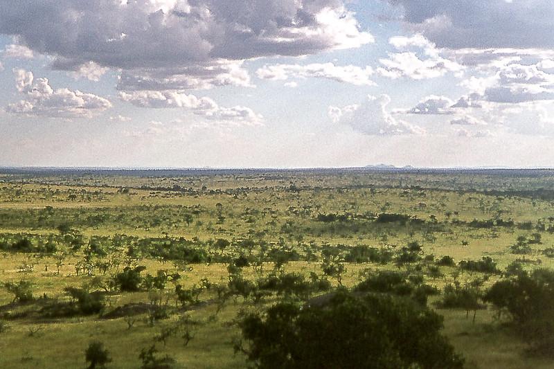 1974-02-2009 Serengeti from Lobo Lodge, Serengeti, June 11 1974