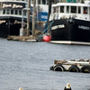 a pair of eagles near fishing boats