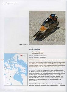 2018 Birds of Nunavut Volume 2