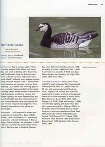 2018 Birds of Nunavut Volume 1