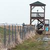 Site de miroise - Birding Site