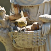 A female Hooded Oriole perched on the basket of my Saint Francis garden statue. She was with two other female orioles and they were all searching for insects.