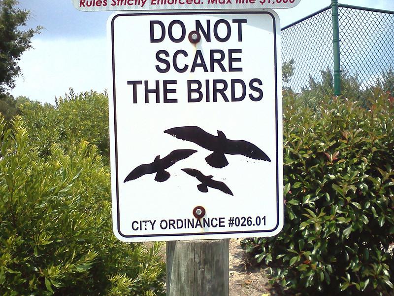 Blue Heron Nature Trail<br /> Tybee Island - North Beach