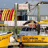 Captain Mike's Dolphin Boats and a Brown Pelican!<br /> Tybee Island Marina