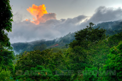 """Dawn at the Savegre Mountain Hotel, Costa Rica. This was the scene while I was waiting for the Quetzals to show up. This is an """"HDR"""" image. HDR (high dynamic range) images are made from multiple images (5 images here) captured with identical compositions but with different exposure values. A software program then processes the multiple images and produces 1 image containing the best values from the original images."""