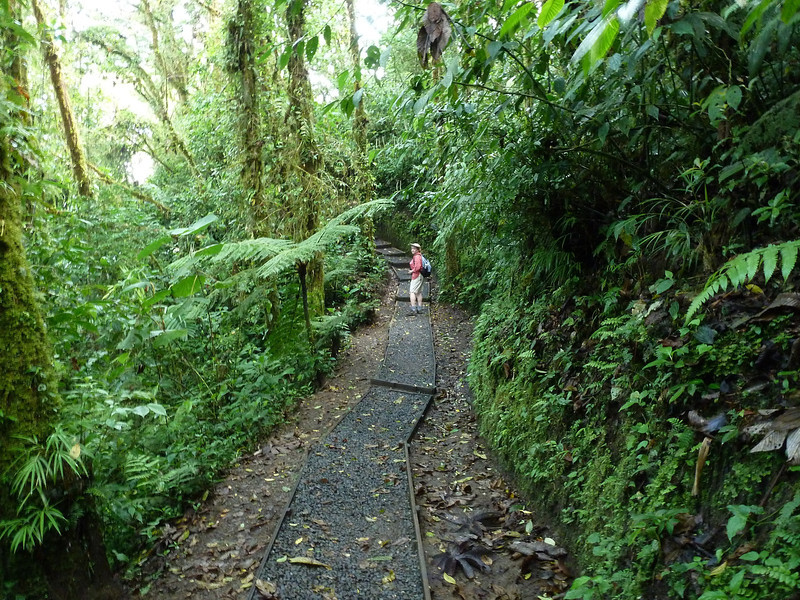 Costa Rica Day 5