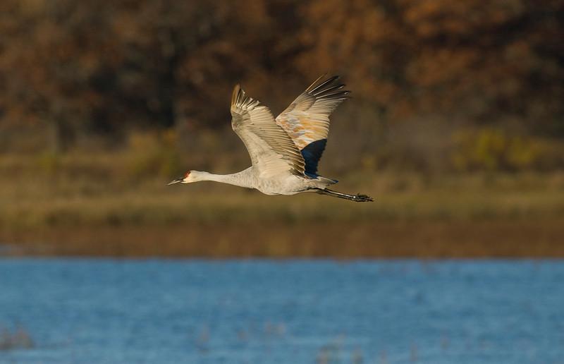 ASC-7064: Flying by Dike 5