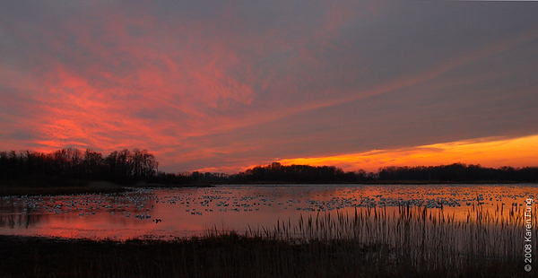 Nov 28th: Sunset at Bombay Hook NWR, Delaware