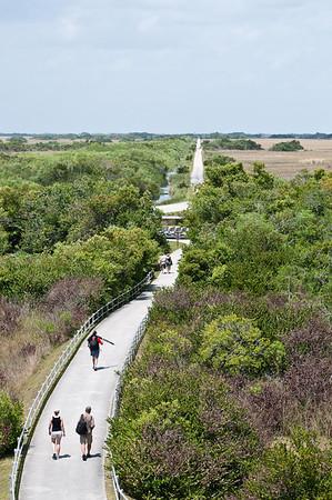 Shark Valley Trail, Everglades