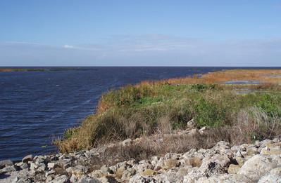 Lake Okeechobee (north shore)
