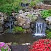 Parrot mountain gardens