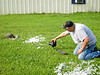 Russ Wesley photographing hawk eating seagull on lawn of town offices in Moosonee, Ontario.