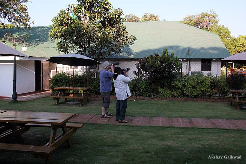 Bruce Craig, Canon EOS 7D + Sigma 50-500 OS ISM<br /> Sheila Jonahs Craig, Canon EOS 60D + Canon 100-400 IS USM<br /> Citrus Hotels, Mahabaleshwar, Maharashtra, India, 25/02/2012.