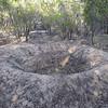Malleefowl (Leipoa ocellata) nest mound