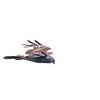 Reunion Harrier (Circus maillardi) [Malagasy Harrier (Circus macrosceles)] Famboni, Moheli, Comoros