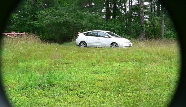 7/9/06   Parking lot at Haskell Swamp, Dexter Rd.
