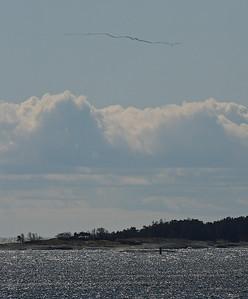 15.4.2012 Kirkkonummi, Finland