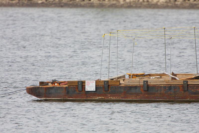 Experimental Least Tern Nesting Barge <br /> Ellis Bay <br /> Riverlands Migratory Bird Sanctuary