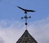 Missed getting pics of red-tailed hawk and another large hawk flying over the Norfolk library.  Then noticed the weather vane on their gazebo.