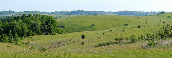Henslow's Sparrow habitat, Tri Valley Wildlife Area, Ohio.