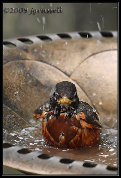 """Bath time!"""