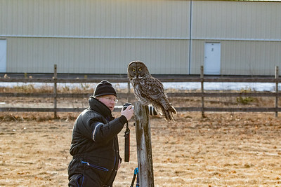 3-13-2017 Great Gray Owl 1725
