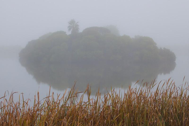 Pond#1-1123