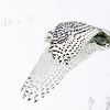 Snowy Owl Flying Across Snow Covered Farm Field 3