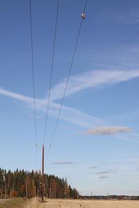 14.10.2013 Pukkila, Finland