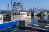 Lr W Pubnico wharf-8150335