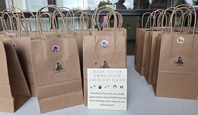 A gift bag for your dog or cat