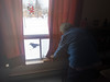 Elizabeth Kaysook watches a Raven enjoy an egg outside her window.