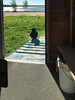 View through window beside door of raven on front step.