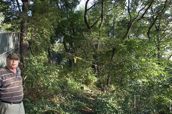 """August 24th:  Taken after more trees were cut down in the """"Forever Wild"""" section of Riverside Park, giving a more open view of the Hudson River from the Viewing Platform, which is to the left of the fence.  The heavily wooded section beyond the string shows how dense this area had been previously.  To see a larger version, move the mouse over the photo and click """"Original""""."""