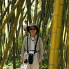 Karen looking for quail in the Bamboo Garden at Quail Botanical Garden.