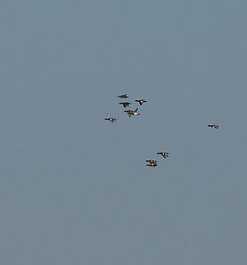 15.5.2012 Kirkkonummi, Finland